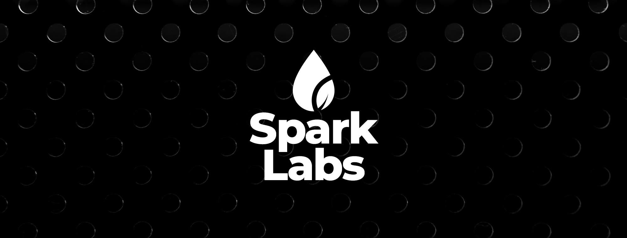 SparkLabs, a Hydrospark think tank